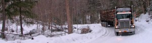 logging_truck_winter